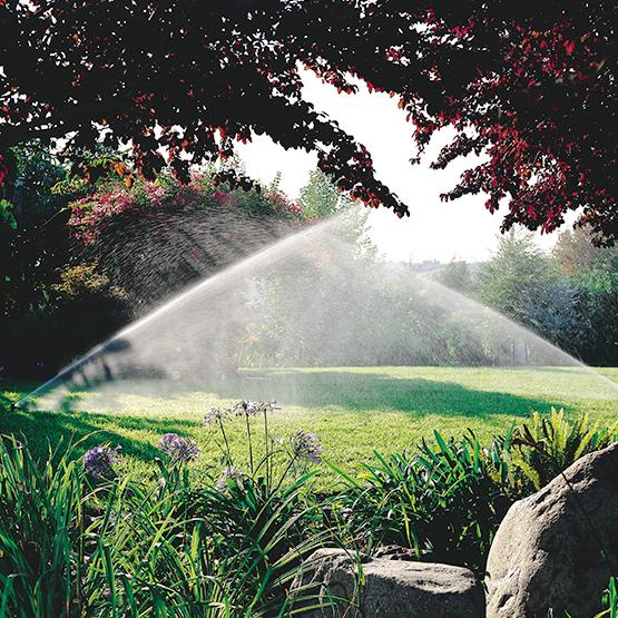arrosage-jardin